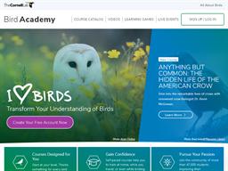 Bird Academy shopping