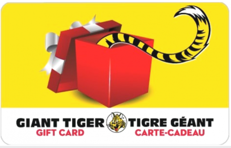 Giant Tiger gift card design and art work